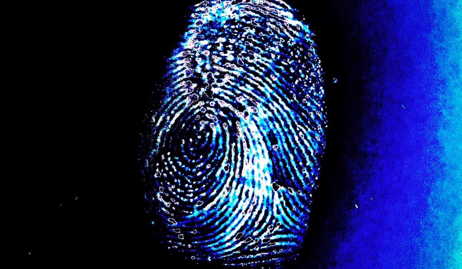 Der genetische Fingerprint